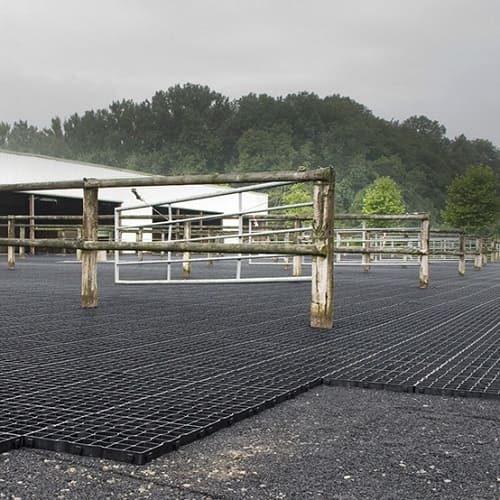 Решетка Ecoteck газонная фото